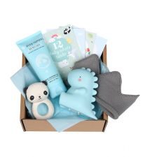 Baby gift box with Teething toy panda, Little light T-Rex, Tiny Humans Baby Body wash, 12 double-sided Baby photo cards, baby hat (0-3 months)